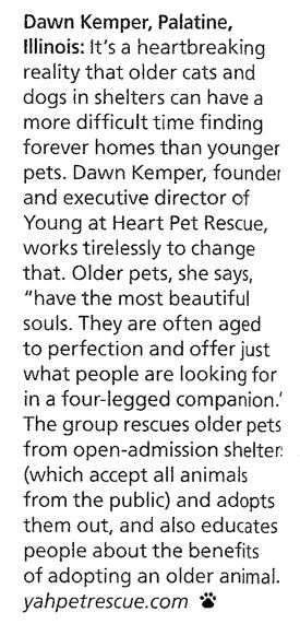 Young At Heart Pet Rescue