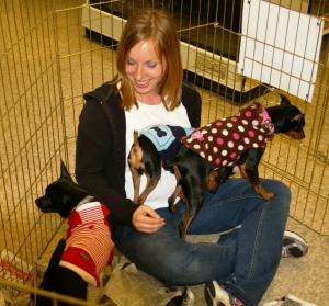 Adoption Day at Petco